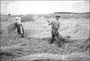 Hans Haase und die Landwirtschaft